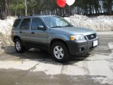 2006 Titanium Green Metallic Ford Escape Hybrid 4WD #6101919