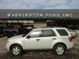2009 Light Sage Metallic Ford Escape XLT V6 4WD #61167136