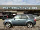 2010 Steel Blue Metallic Ford Escape XLT V6 4WD #61167133