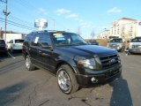 2010 Tuxedo Black Ford Expedition Limited 4x4 #61167086