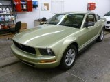 2006 Legend Lime Metallic Ford Mustang V6 Deluxe Coupe #61241593