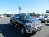 2012 Magnetic Gray Metallic Toyota Tundra Platinum CrewMax 4x4 #61344910