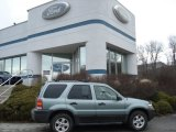 2006 Titanium Green Metallic Ford Escape XLT V6 4WD #61457368