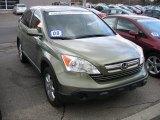 2008 Green Tea Metallic Honda CR-V EX-L 4WD #61457308