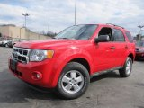 2009 Torch Red Ford Escape XLT 4WD #61537620