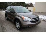 2010 Urban Titanium Metallic Honda CR-V LX AWD #61538010
