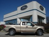 2012 Pale Adobe Metallic Ford F150 XLT SuperCab 4x4 #61580140