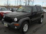 2002 Black Jeep Liberty Sport 4x4 #61580805