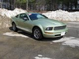 2005 Legend Lime Metallic Ford Mustang V6 Deluxe Coupe #6148484