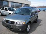 2006 Titanium Green Metallic Ford Escape XLT V6 4WD #6144229