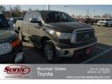 2011 Black Toyota Tundra Platinum CrewMax 4x4 #61701730