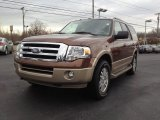 2011 Golden Bronze Metallic Ford Expedition XLT 4x4 #61702322