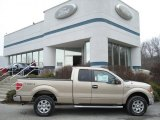 2012 Pale Adobe Metallic Ford F150 XLT SuperCab 4x4 #61761149