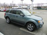 2010 Steel Blue Metallic Ford Escape XLT V6 4WD #61761355