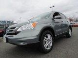 2010 Opal Sage Metallic Honda CR-V EX-L AWD #61761323