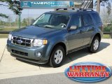 2010 Steel Blue Metallic Ford Escape XLT #61761707