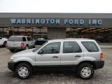 2006 Silver Metallic Ford Escape XLS 4WD #61833277