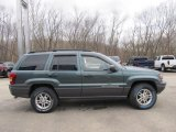 2002 Jeep Grand Cherokee Onyx Green Pearlcoat