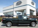 2012 Green Gem Metallic Ford F250 Super Duty XLT SuperCab 4x4 #61966363