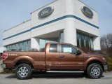 2012 Golden Bronze Metallic Ford F150 XLT SuperCab 4x4 #61966356
