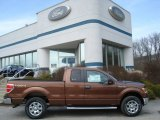 2012 Golden Bronze Metallic Ford F150 XLT SuperCab 4x4 #61966354