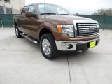 2012 Golden Bronze Metallic Ford F150 XLT SuperCrew 4x4 #62036467