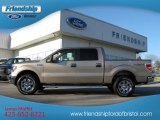 2012 Pale Adobe Metallic Ford F150 XLT SuperCrew 4x4 #62097762