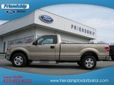 2011 Pale Adobe Metallic Ford F150 XLT Regular Cab #62194142