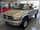 2003 Light Almond Pearl Dodge Dakota SLT Club Cab 4x4 #62243824