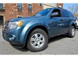 2010 Steel Blue Metallic Ford Escape XLT 4WD #62243638