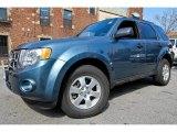2010 Ford Escape Steel Blue Metallic