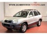 2004 Pewter Hyundai Santa Fe  #62312782