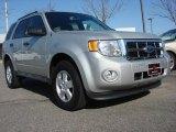 2009 Brilliant Silver Metallic Ford Escape XLT #62377254