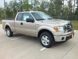 2012 Pale Adobe Metallic Ford F150 XLT SuperCab #62434738