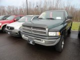 2001 Forest Green Pearl Dodge Ram 2500 ST Regular Cab 4x4 #62434423