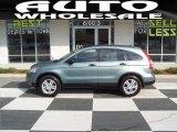 2010 Opal Sage Metallic Honda CR-V EX #62491125