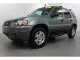 2006 Titanium Green Metallic Ford Escape XLT V6 4WD #62518646