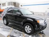 2009 Black Ford Escape XLT V6 4WD #62530662