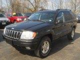 2002 Black Jeep Grand Cherokee Limited 4x4 #62596614