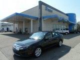 2010 Atlantis Green Metallic Ford Fusion SE #62596590