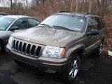 2002 Woodland Brown Satin Glow Jeep Grand Cherokee Limited 4x4 #62596280