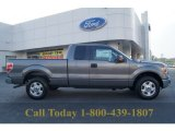 2011 Sterling Grey Metallic Ford F150 XLT SuperCab #62596264
