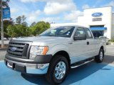 2010 Ingot Silver Metallic Ford F150 XL SuperCab #62596217