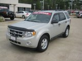 2009 Light Sage Metallic Ford Escape XLT V6 #62714849