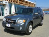 2010 Steel Blue Metallic Ford Escape XLT V6 4WD #62714698