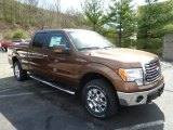 2012 Golden Bronze Metallic Ford F150 XLT SuperCrew 4x4 #62757423