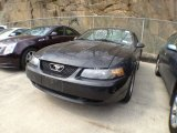 2002 Black Ford Mustang V6 Coupe #62758279