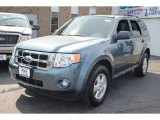 2010 Steel Blue Metallic Ford Escape XLT #62758164