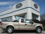2012 Pale Adobe Metallic Ford F150 XLT SuperCab #62757223