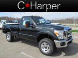 2012 Green Gem Metallic Ford F250 Super Duty XLT Regular Cab 4x4 #62757091